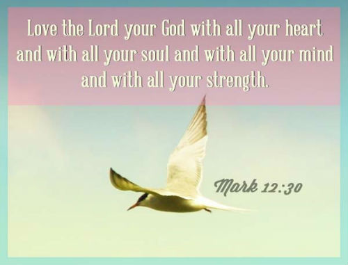 bible-verse Mark 12 v 30