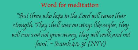 Isaiah 40 v 31