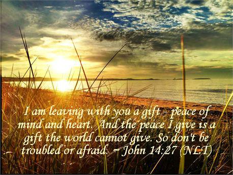 John 14 v 27