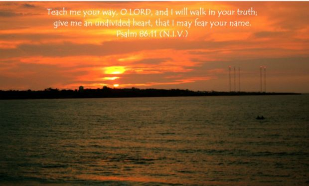 Quote Psalm 86 v 11