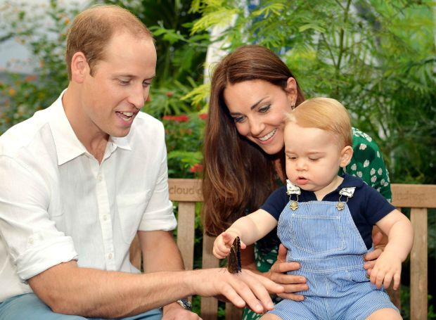 Prince George checks out a butterfly