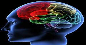 8 Ways To Improve Brain Power Infographic